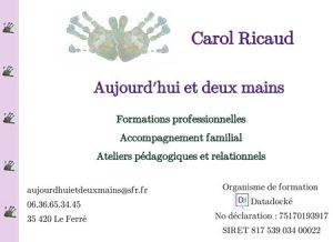 carol ricaud, aujourd'hui et deux mains, formation, consultation, ile et vilaine, manche, bretagne, normandie